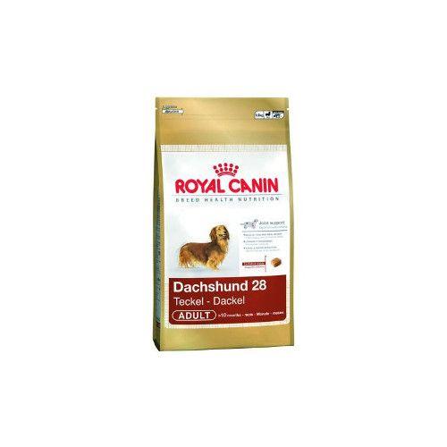 Dachshund 28 Dog Food Dog Food Recipes Royal Canin Dog Food Royal Canin
