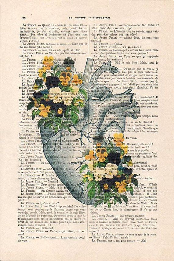 Heart Pansy Anatomy Botanical Flower Vintage Drawing Book Art Etsy Human Anatomy Art Vintage Art Prints Vintage Drawing