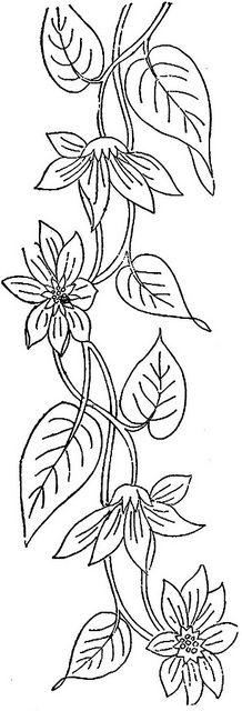 1886 Ingalls Flowering Vine | Flickr - Photo Sharing!