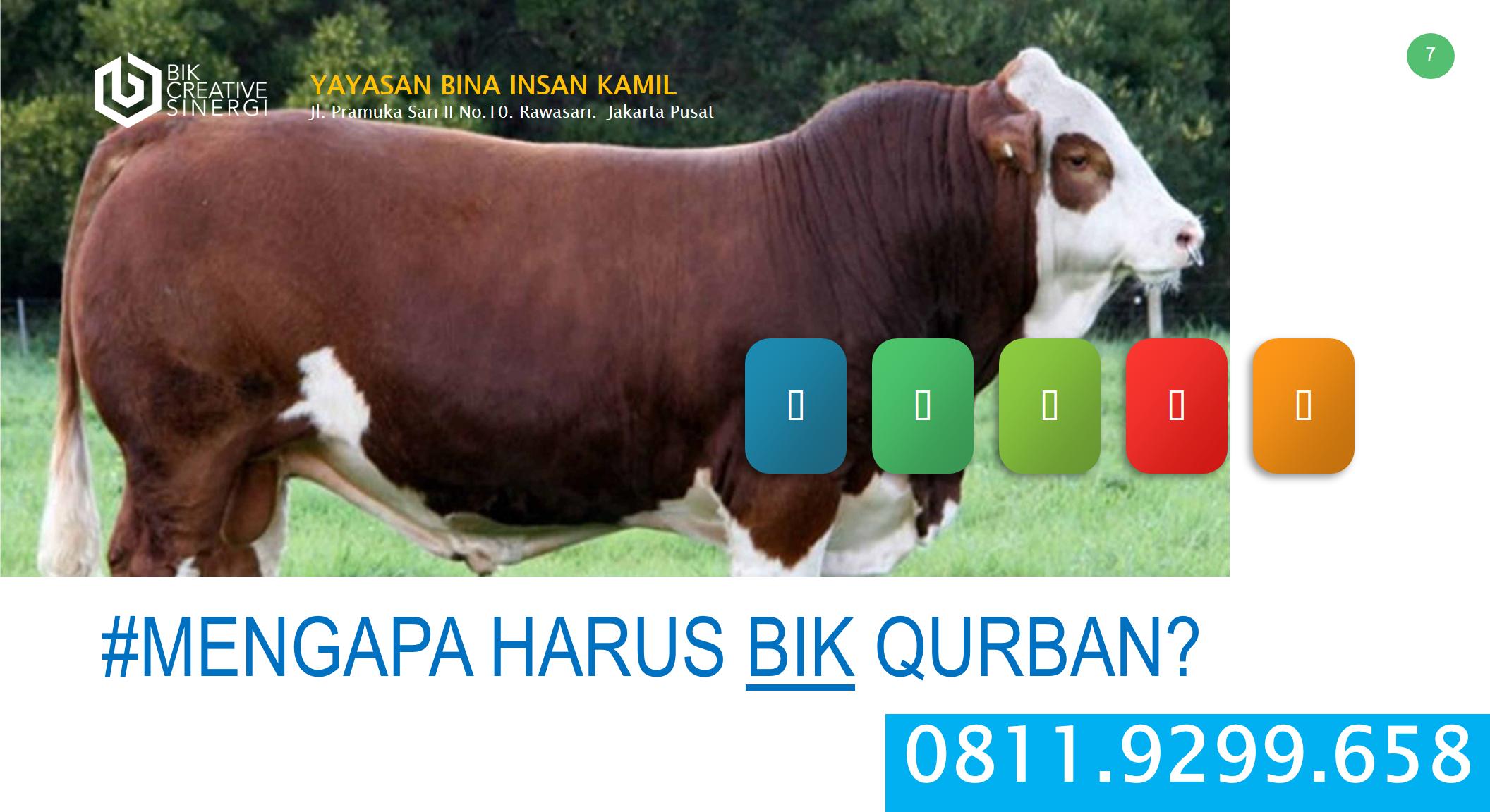 Jual Hewan Qurban Bekasi Jual Sapi Qurban Bekasi 08119299658 Terjual Jual Hewan Qurban Murah