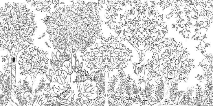 Desenhos Para Adultos Colorir Pesquisa Google Coloracao Adulta Paginas Para Colorir Para Adultos Floresta Encantada