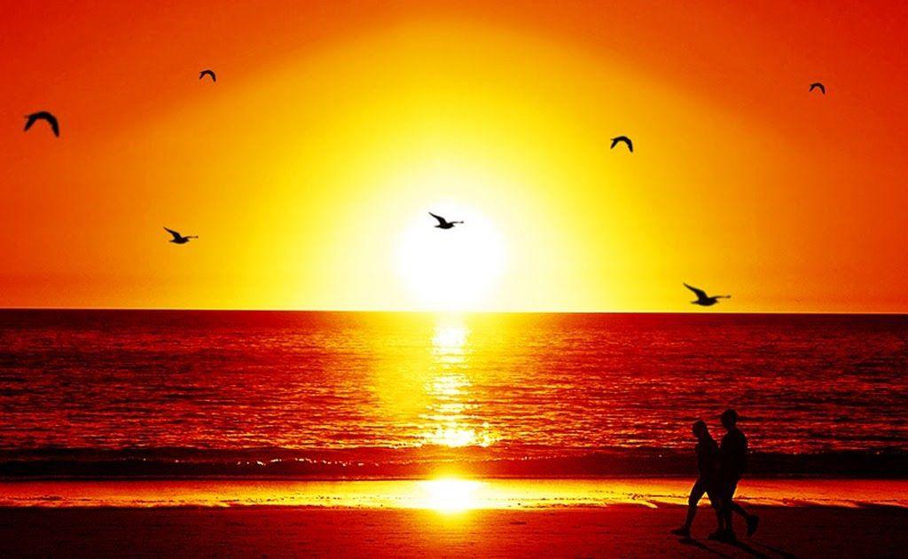 Pemandangan Senja Di Tepi Pantai Lukisan Segala Sesuatu Itu Boleh Berlainan Terserah Daripada Keperluan Setiap Individu Luk Pemandangan Fotografi Alam Pantai