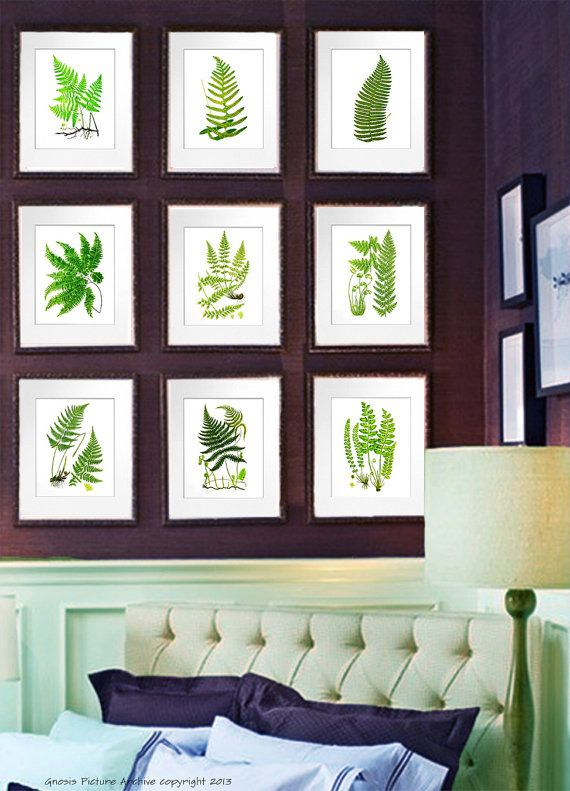 Fern print botanical print set of 9 antique fern prints leaf prints green decor home decor wall art prints