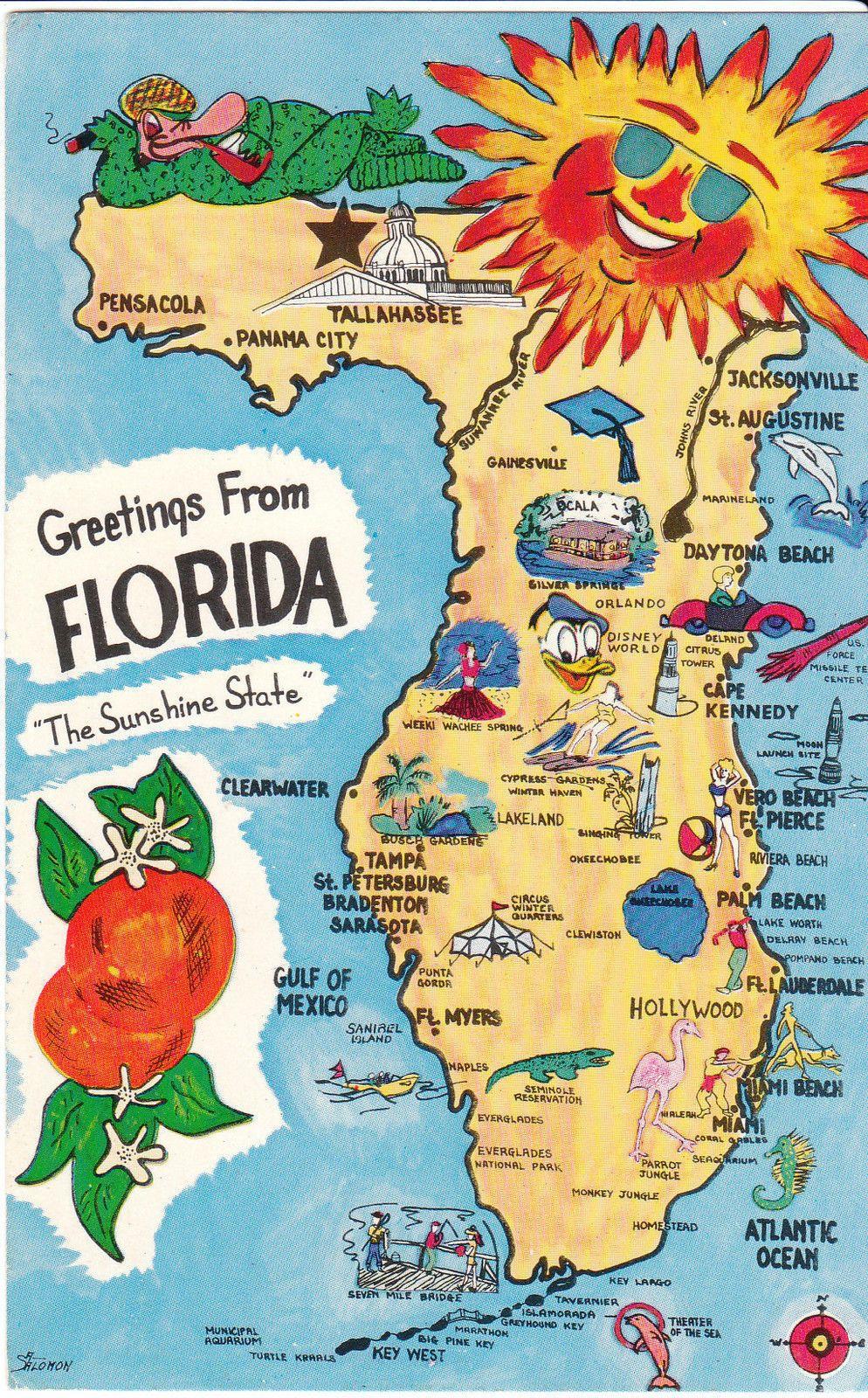 Vintage Florida Map Vintage Maps Pinterest - Florida map madeira beach