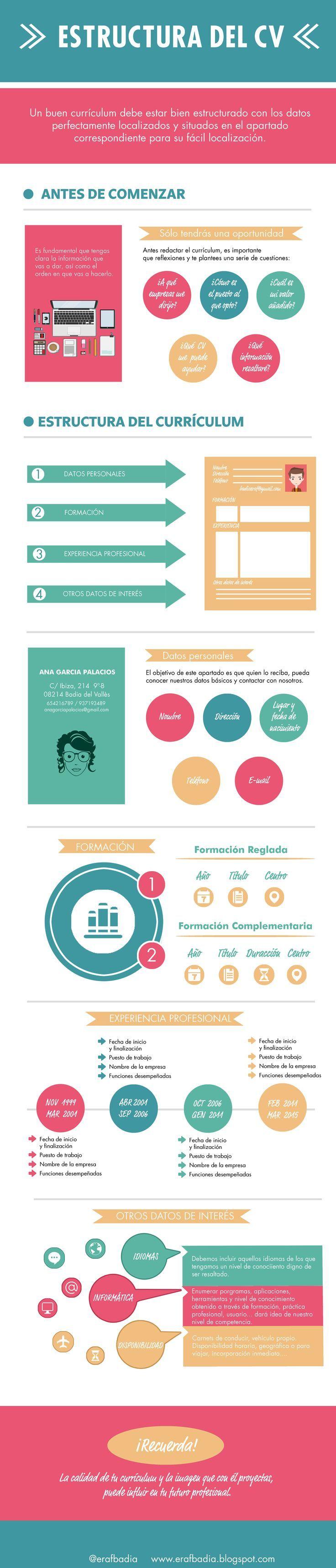 estructura y contenido de un curriculum infografia