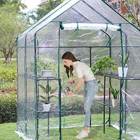 Amazonsmile Bestmassage Portable Mini Greenhouse Indoor 640 x 480