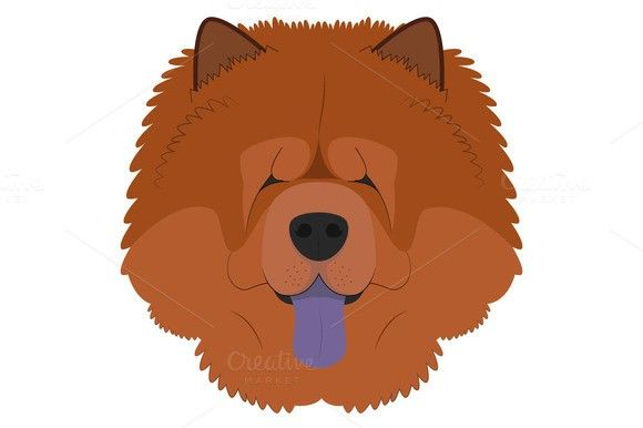 Chow Chow Dog Vector Illustration Pet Icons 2 00 Chow Chow