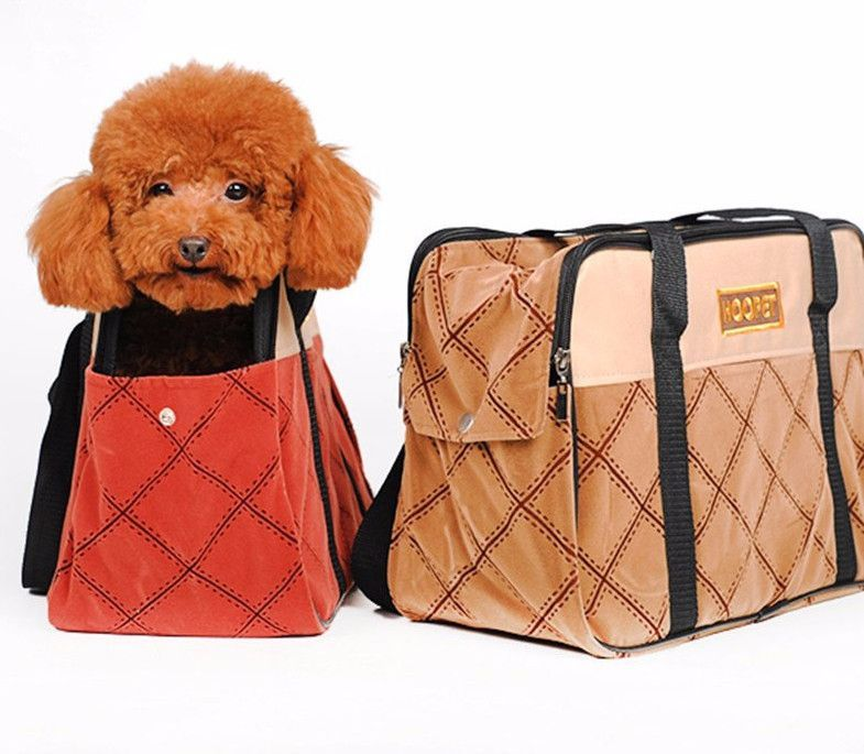 b163b0887a Soft Side Petite Doggie Travel Carrier | Products | Pet travel, Pets ...