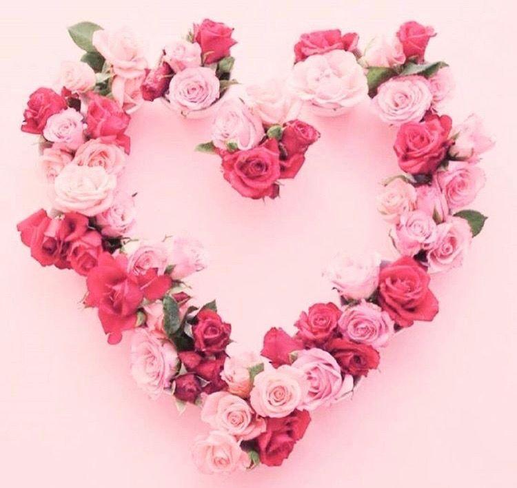 Pin Van Stephanie Op Roze Roze Roze Fleurs Fleur Rose En Deco Fleur