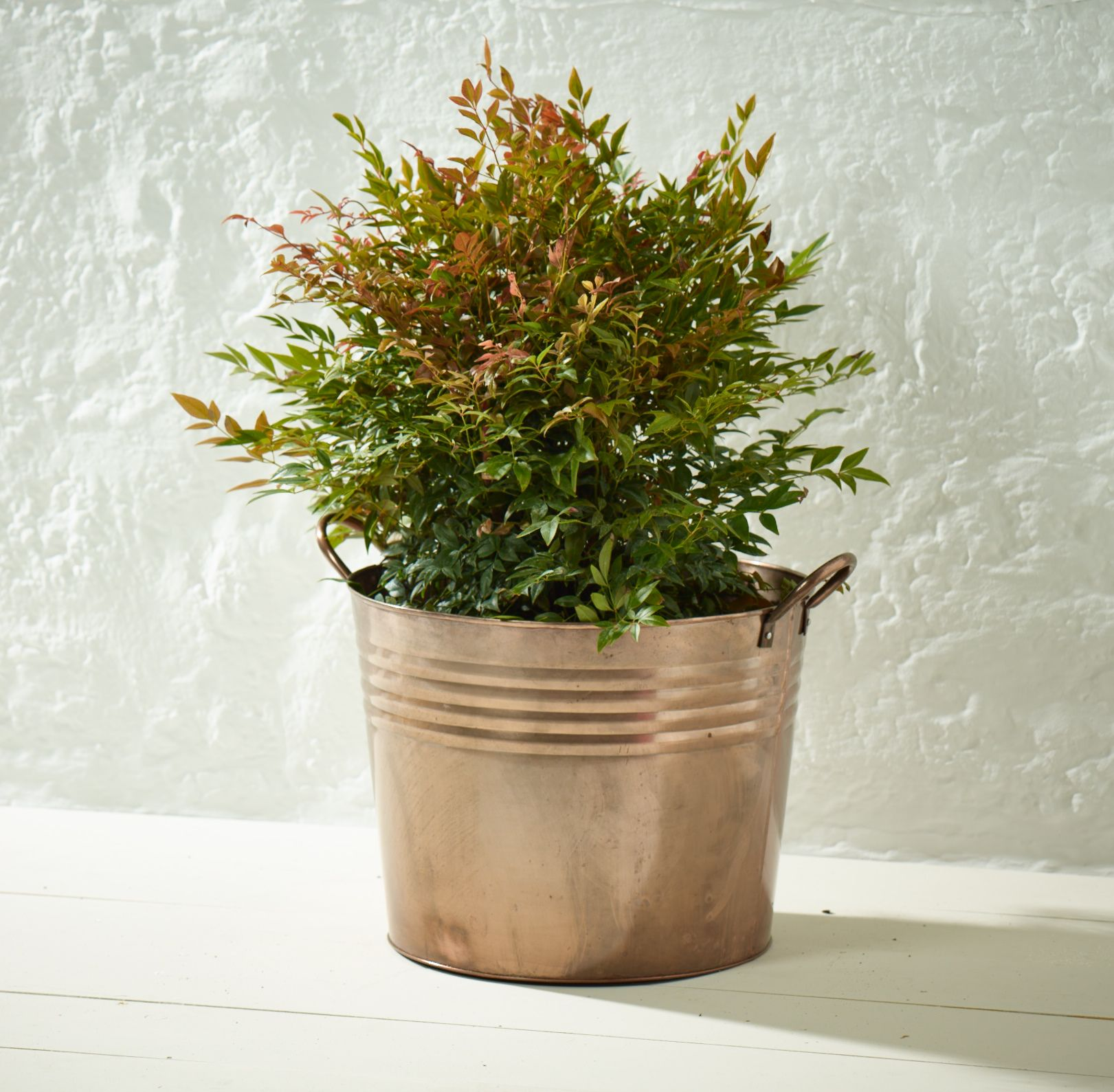Rustic Garden 171115177904Custom Name Bucket