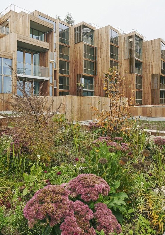 BIG svela un paesaggio artificiale in legno di cedro e vetro  Domus  kuci_ce