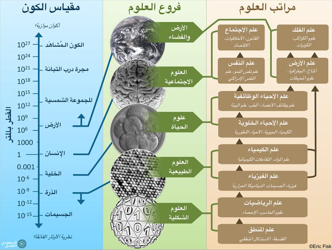 رسم لمراتب العلوم وفروعها مقارنة بالكون Science Branches Of Science Pictures
