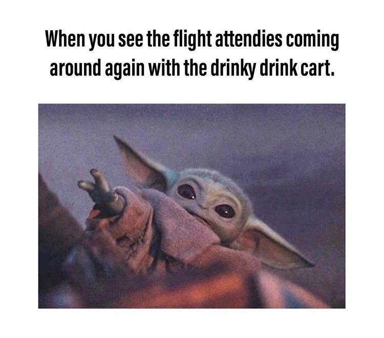 Pin By Kimberly Sherwood On Baby Yoda Yoda Meme Star Wars Memes Yoda