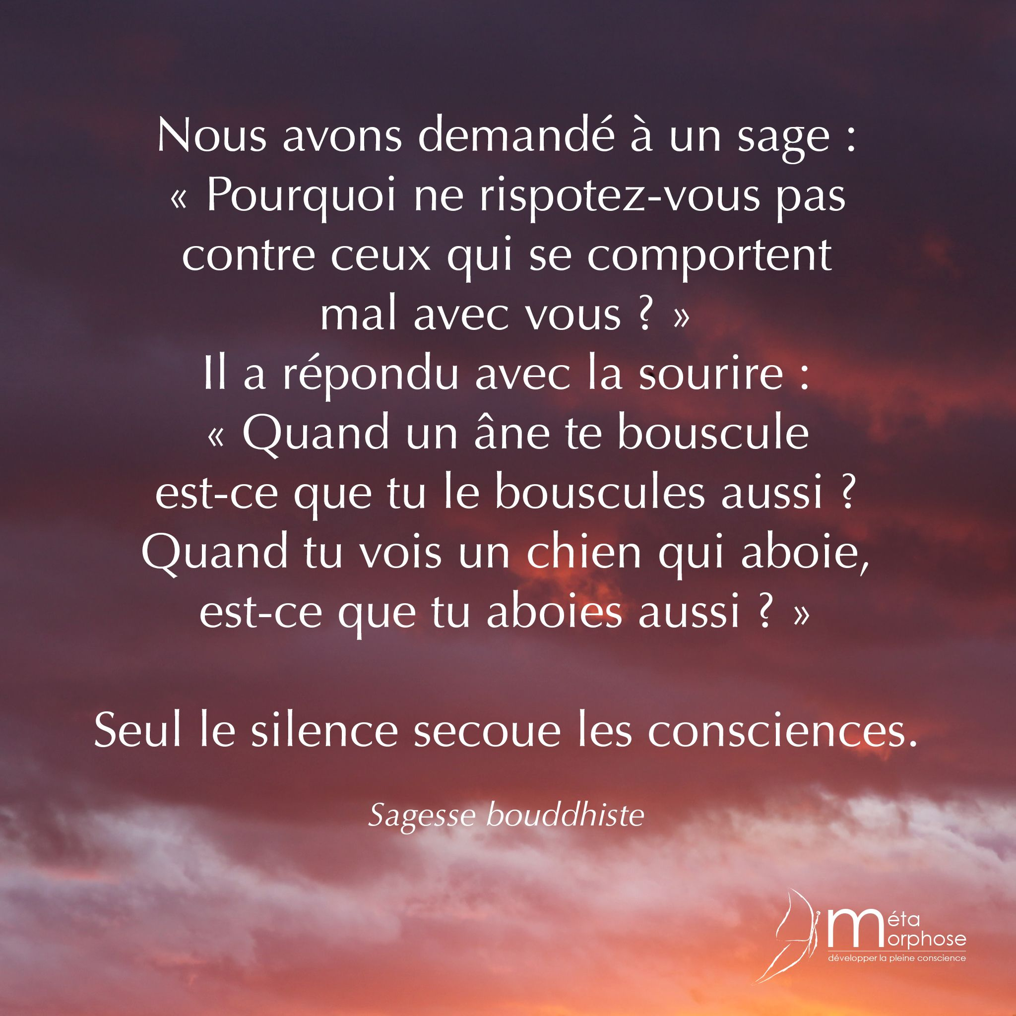 Secouer Les Consciences 08h08 Jesuispresentamavie Meditation