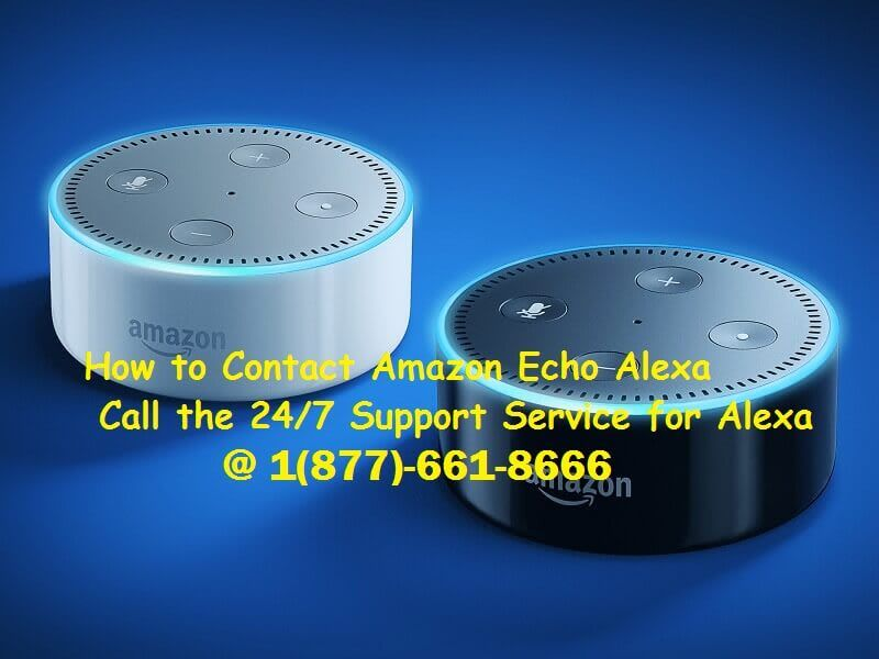 Pin by Microsystem Support Inc. on Amazon Echo Alexa