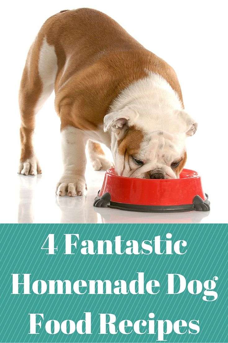 4 Fantastic Homemade Dog Food Recipes Your Pet Will Love Dog