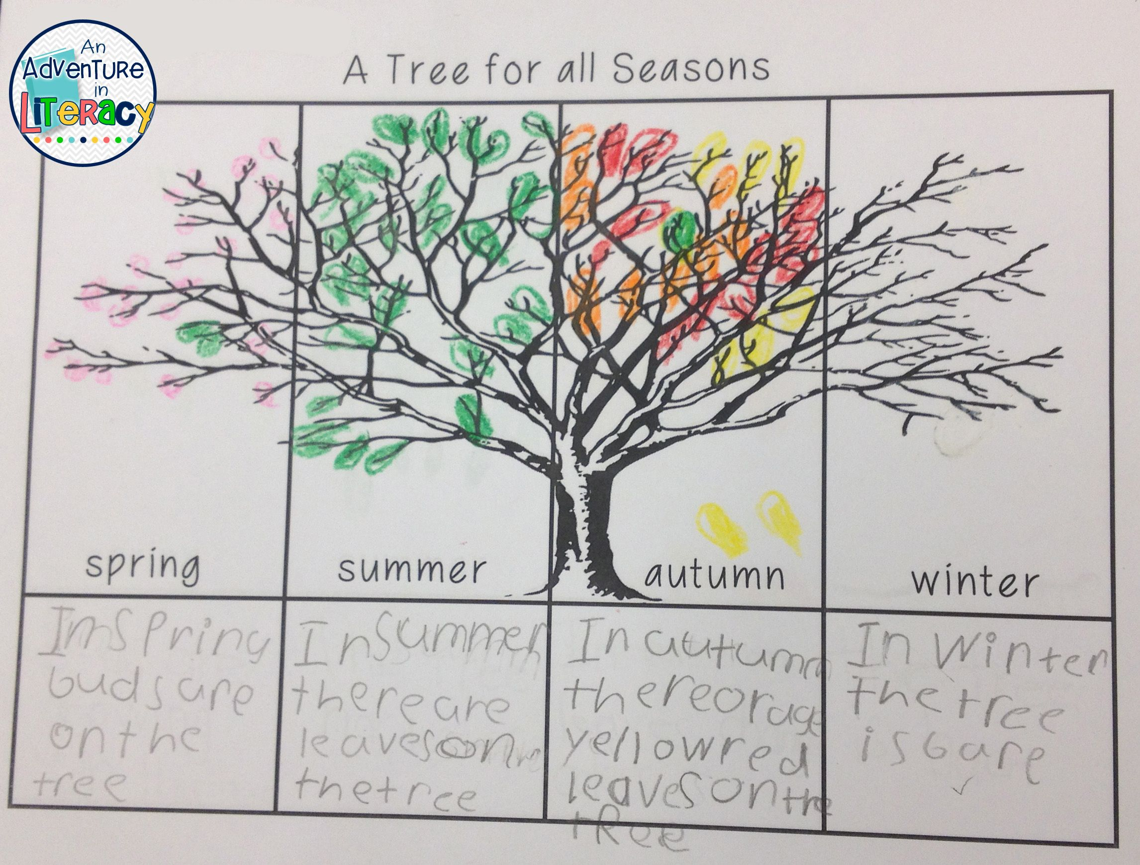 Four Seasons Unit Winter Spring Summer Fall