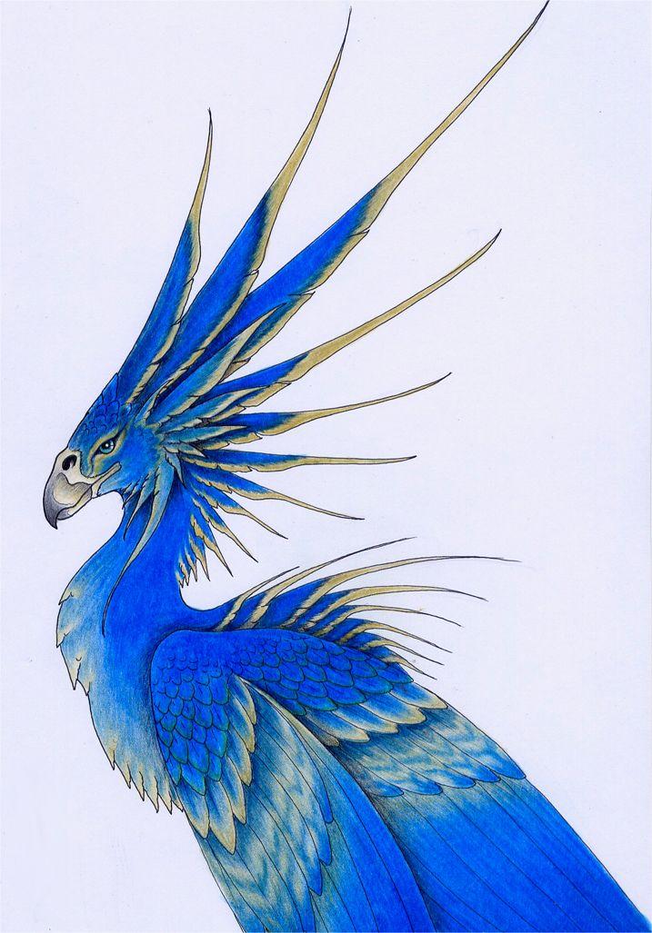 Great Tropical Bird by verreaux on DeviantArt