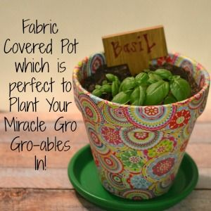 Fabric Covered Flower Pot which is perfect to Plant Your Miracle Gro #grables in! #plants #garden #terracotta