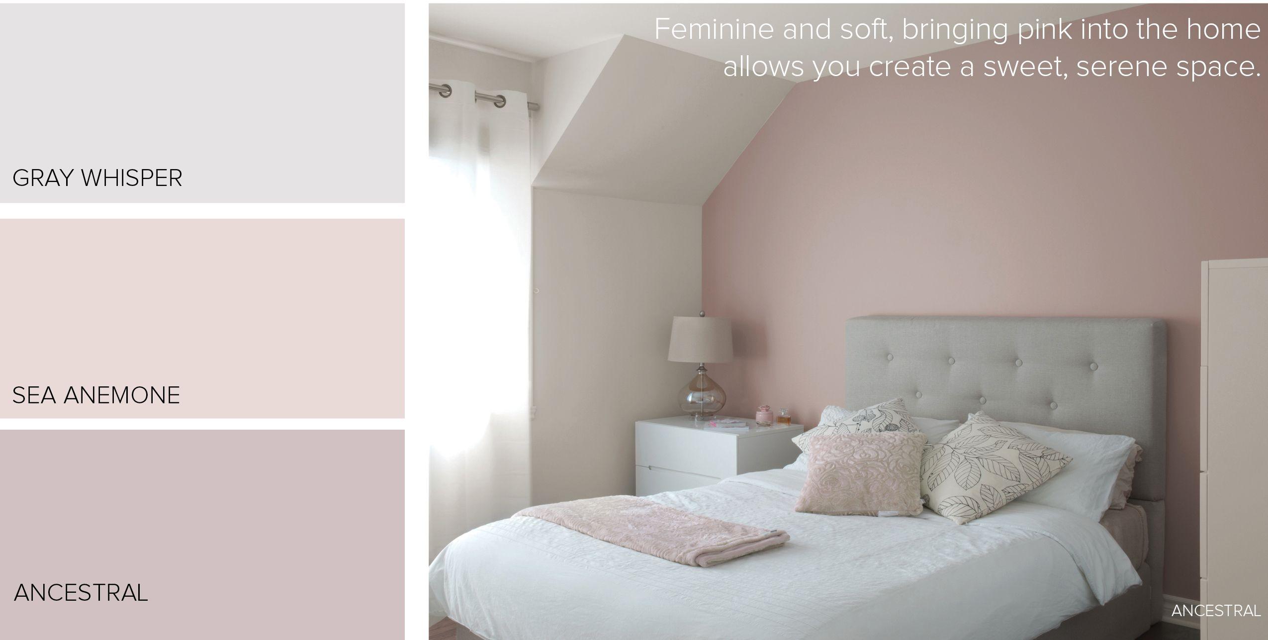 Found On Bing From Www Paintzen Com In 2020 Grey Paint Colors Pink Paint Colors Perfect Grey Paint Color