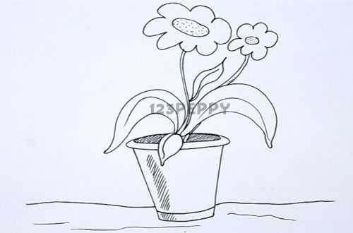 How To Draw Flower Pot Basic Drawings Flower Drawings Object