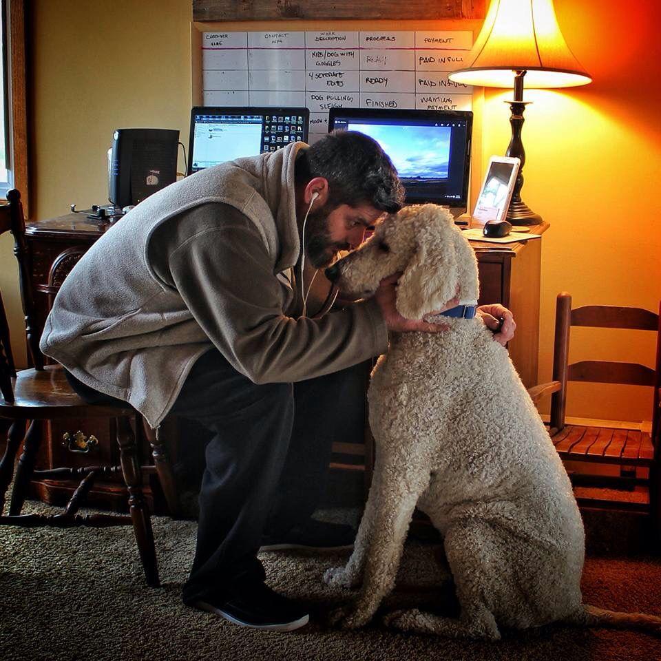 Chris Cline And Juji Actual Size Big Dogs Labradoodle Goldendoodle Dog Photos