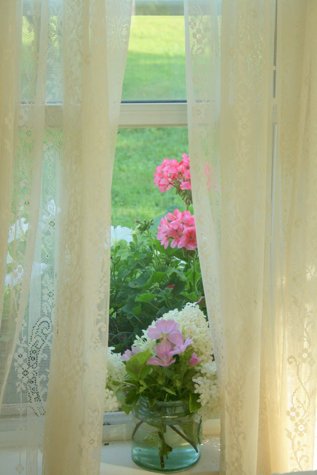 Screen windows, lace curtains, and flowers