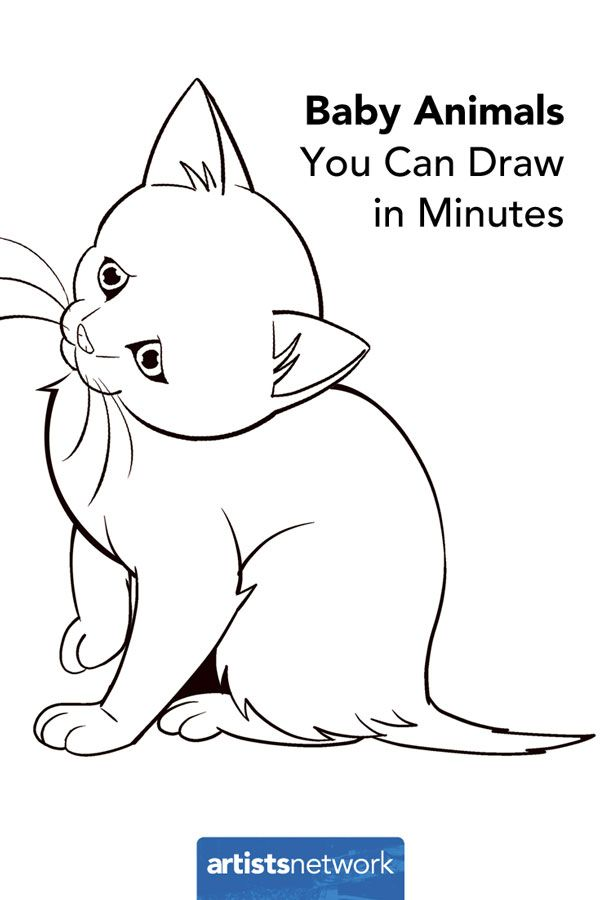 Perfect for Beginners: How to Draw Easy Animals | Kitten ...