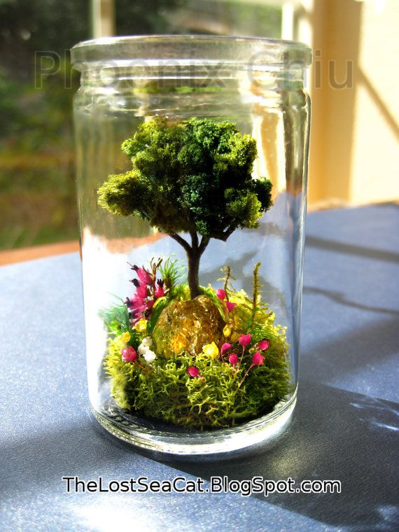 birthstone tree terrarium tree of life glass terrarium fern moss garden crystal terrarium real. Black Bedroom Furniture Sets. Home Design Ideas