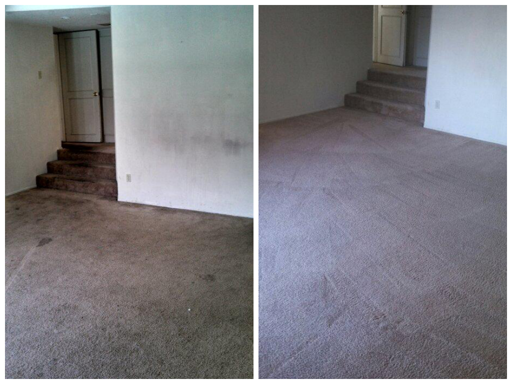 stanley steemer san diego carpet cleaning before and after