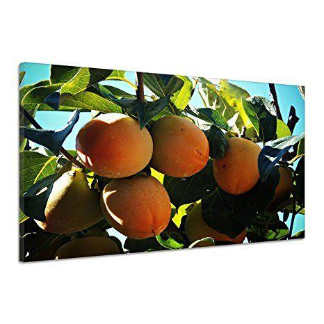 Khaki Persimon Obst Baum Orange Pflanze Natur Leinwand Poster Druck