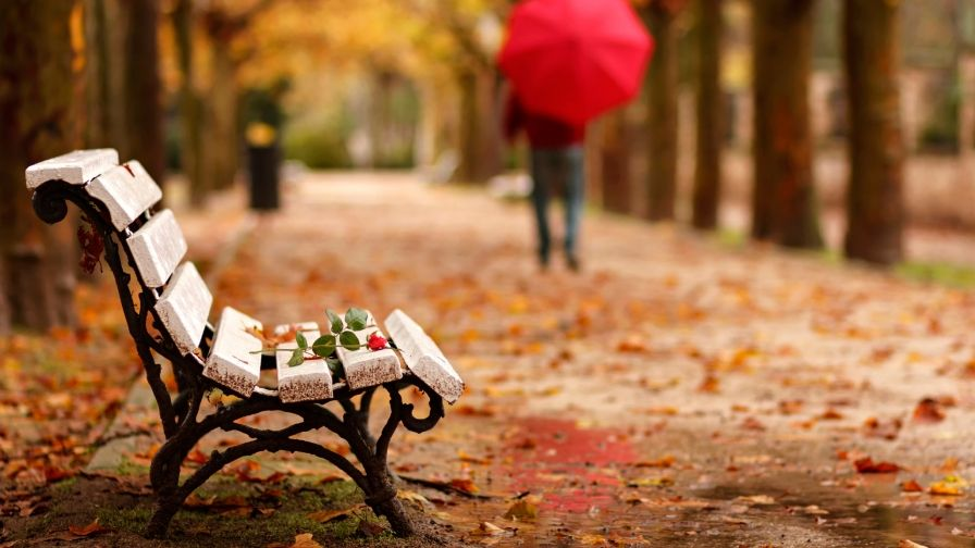 Adios Goodbye Autumn Hd Wallpaper Download