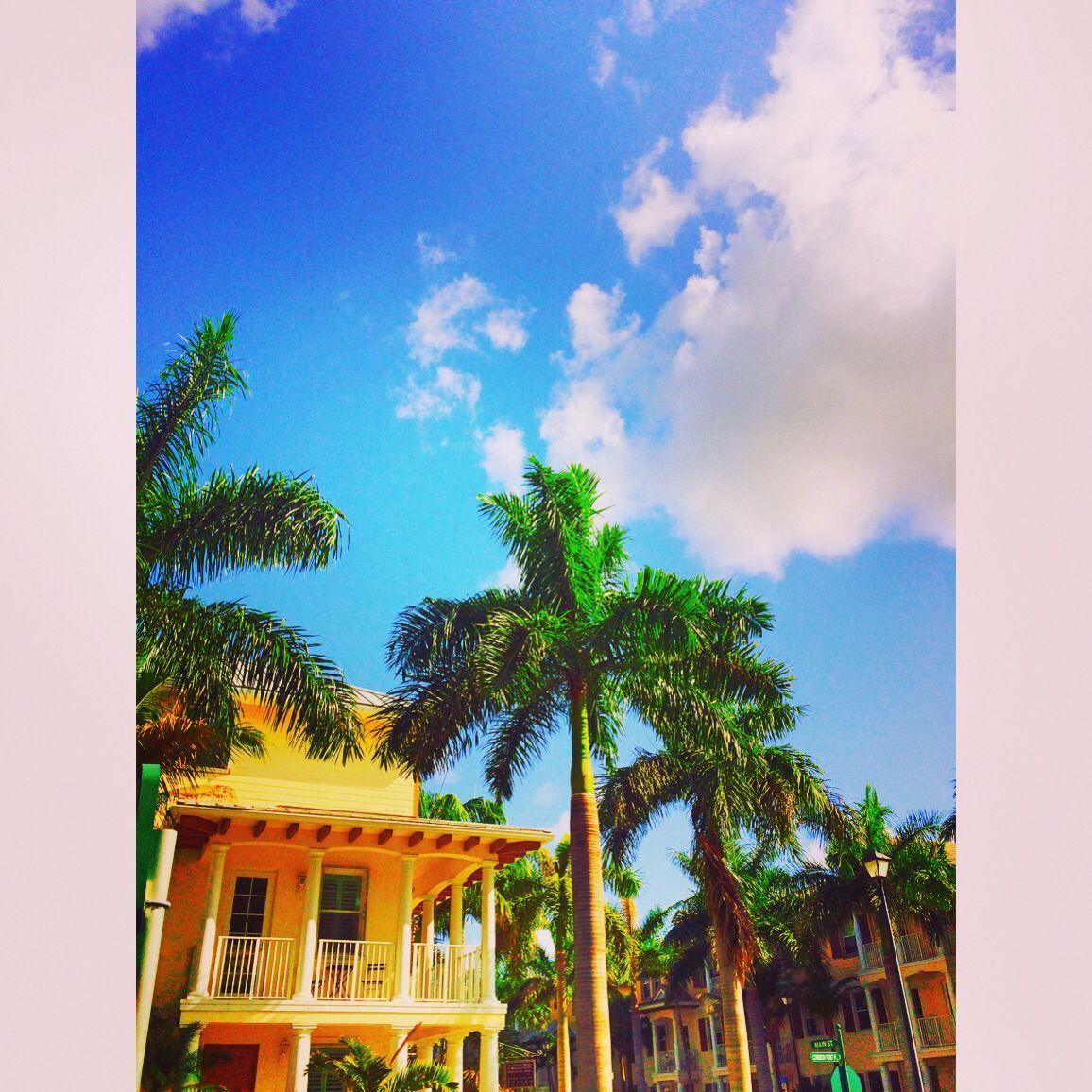 f1bc01c5cc90a71aec5752d875103553 - Homes For Rent Evergrene Palm Beach Gardens
