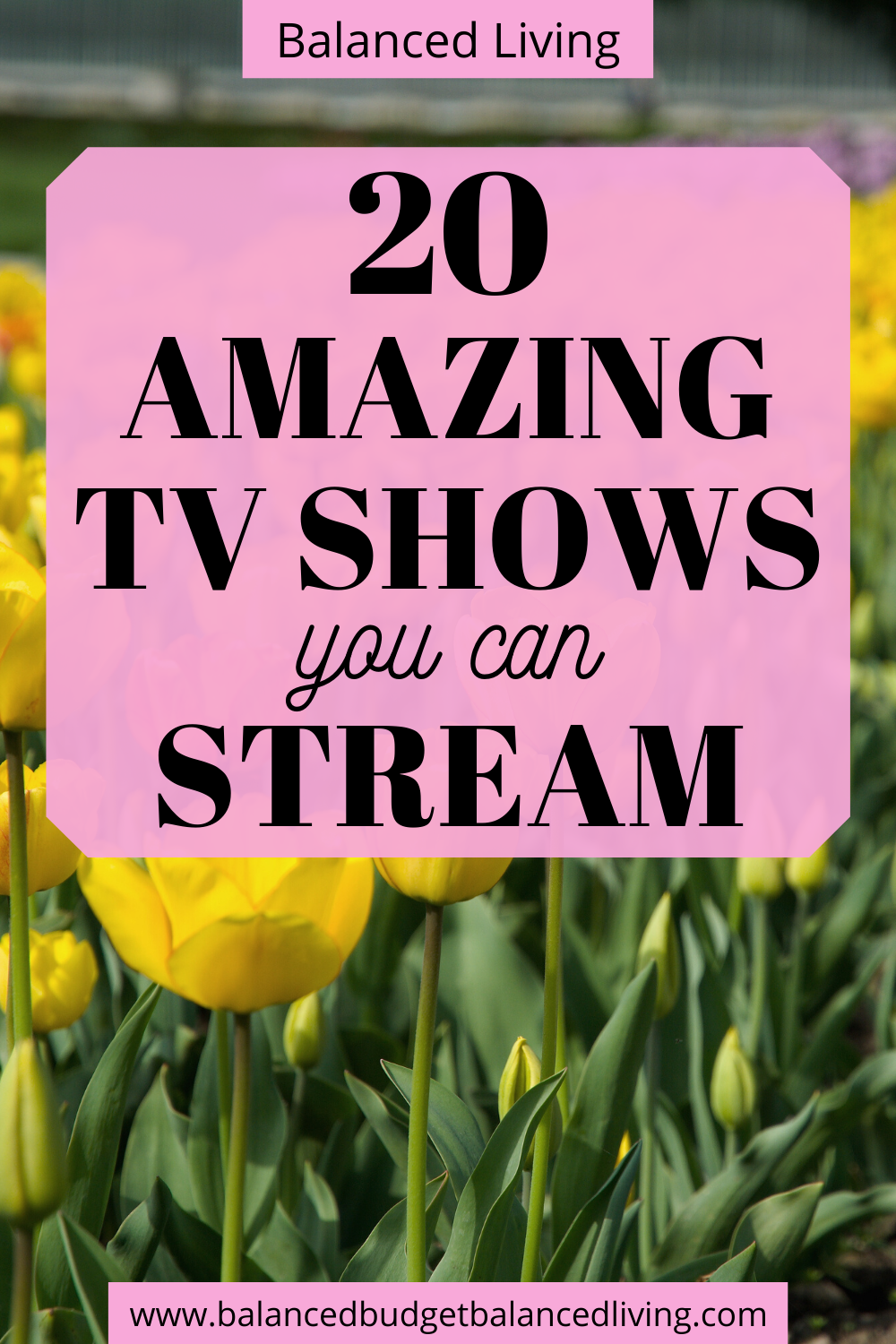 20 amazing TV shows you can stream in 2020 Streaming tv