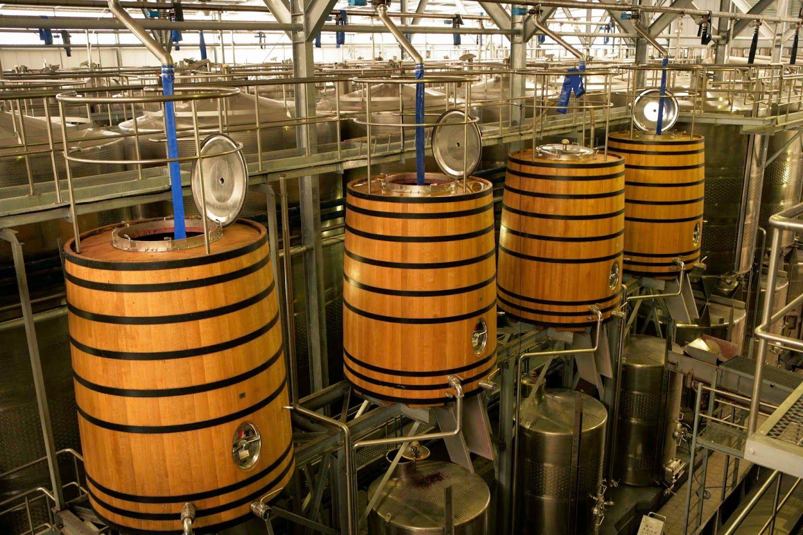 Miguel Chan: Nederburg Harvesting, Vineyards, Cellar and Winema...