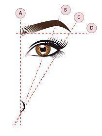 Der perfekte Schwung fr die Augenbrauen | Pinterest ...