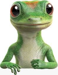 Image Result For Geico Gecko Embrace Pet Insurance Gecko