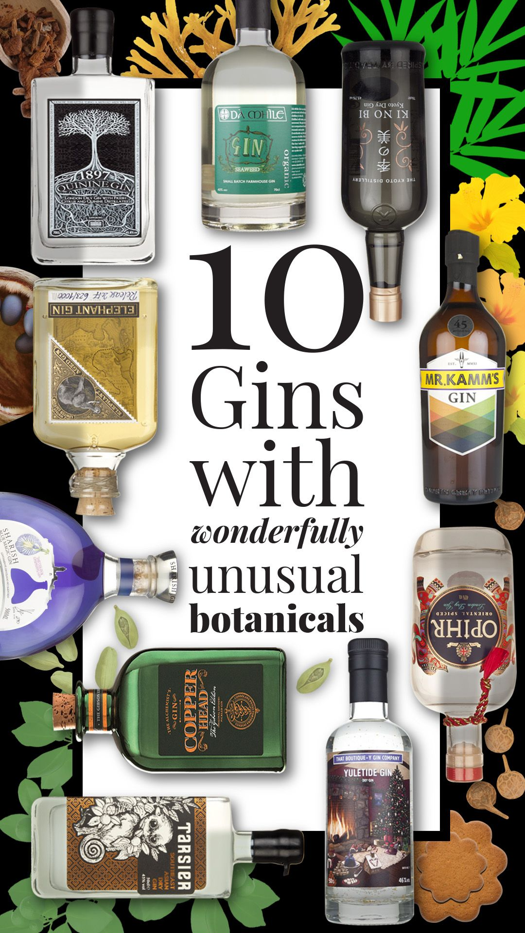 10 of the best gins with wonderfully unusual botanicals #bestgincocktails