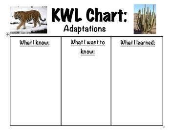 Kwl Chart  Adaptations  Chart And Animal Adaptations