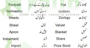 common english words used in daily life with urdu meaning