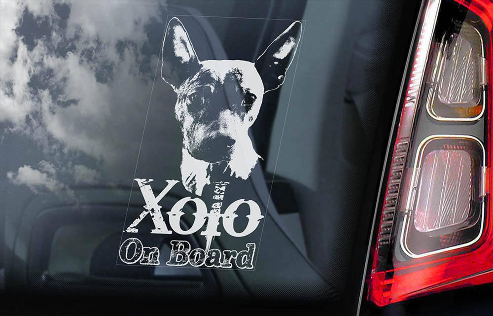 Newfoundland on Board Car Window Sticker V01 Landseer Newf Dog Sign Decal