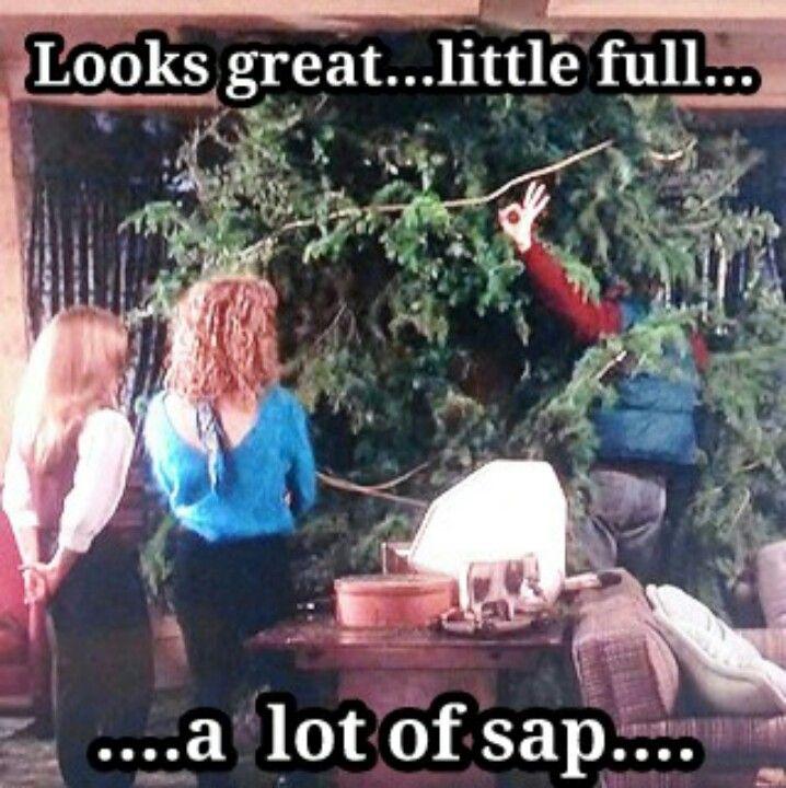 Christmas Vacation My Favorite Christmas Movie Christmas Vacation Movie Christmas Vacation Quotes Christmas Movie Quotes