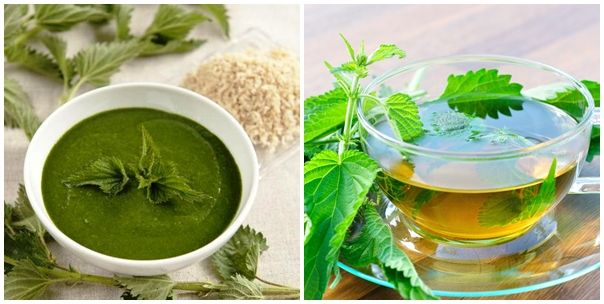 Nettle is a great hair, joints, skin and high pressure