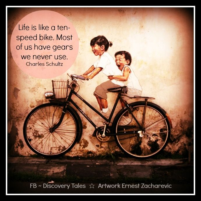 Life Is Like A Ten Speed Bike Most Of Us Have Gears We Never Use