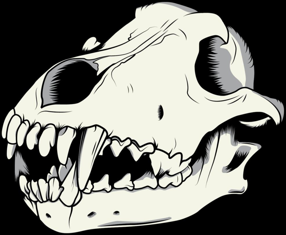 Wolf Skull Vector By Niktollison Wolf Skull Pressure Units Bane