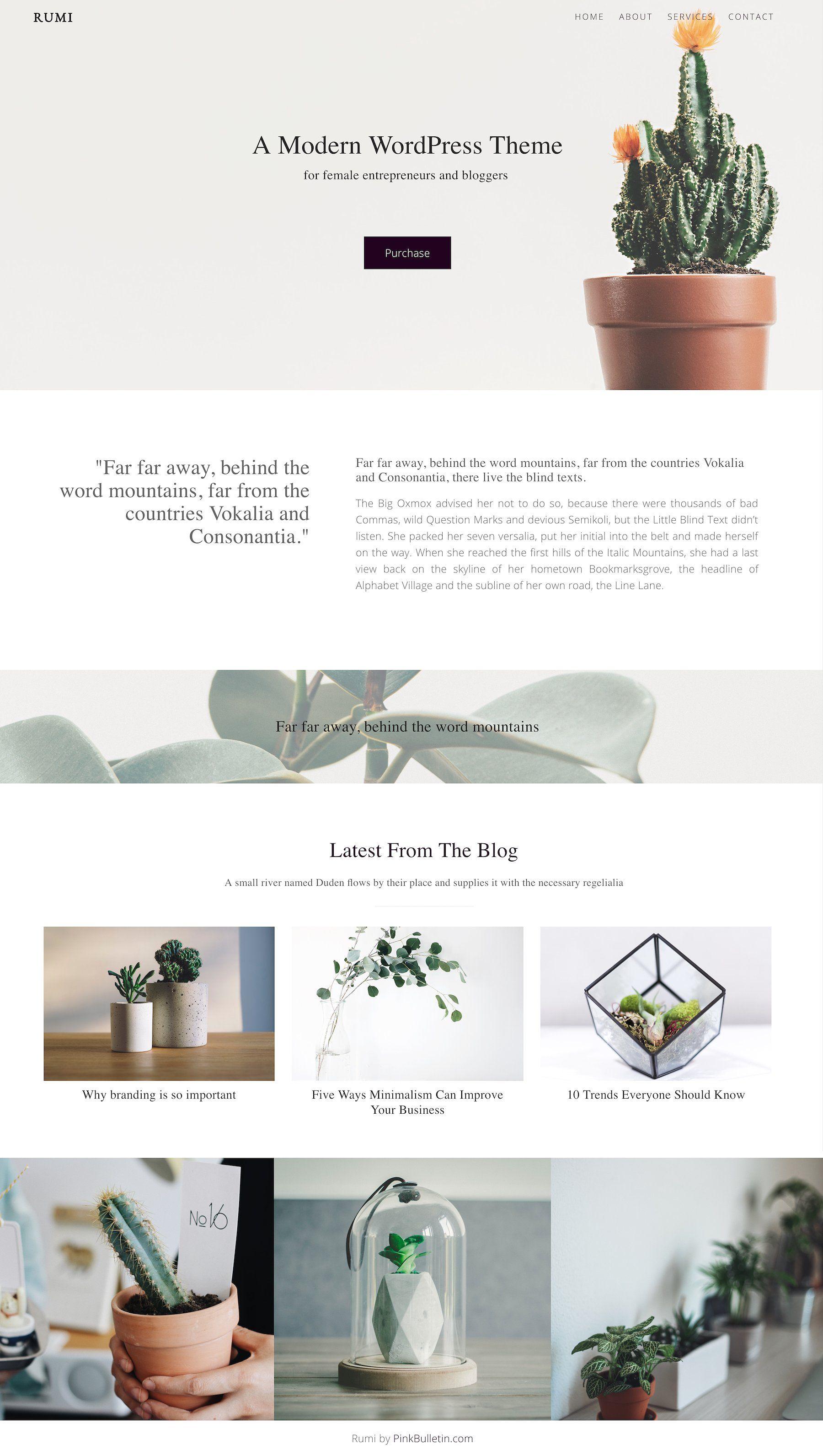 Rumi Minimal Theme Page Builder By Pinkbulletin On