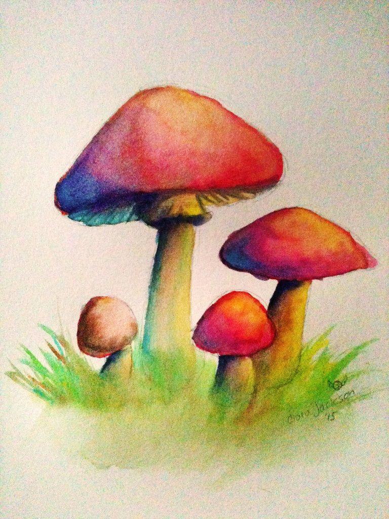 watercolor mushroom practice � watercolors pinterest