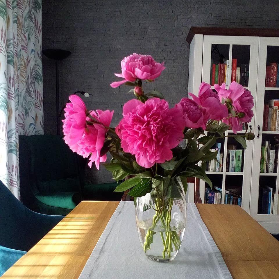 Najpiekniejszy Zapach Swiata Piwonie Kwiatysapiekne Peonies Wmoimdomu Instagram Posts Glass Vase Instagram