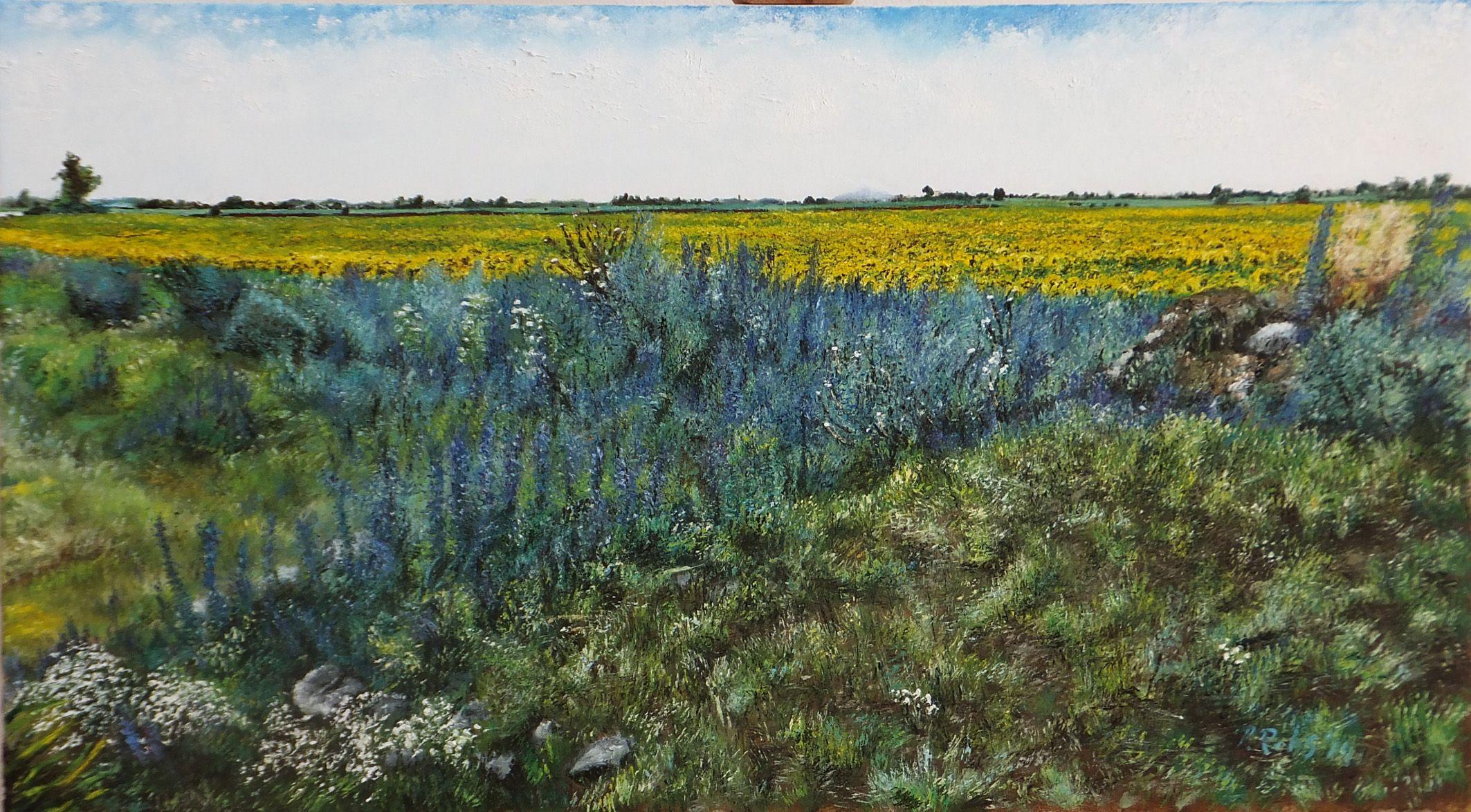 Sunflower -horizon
