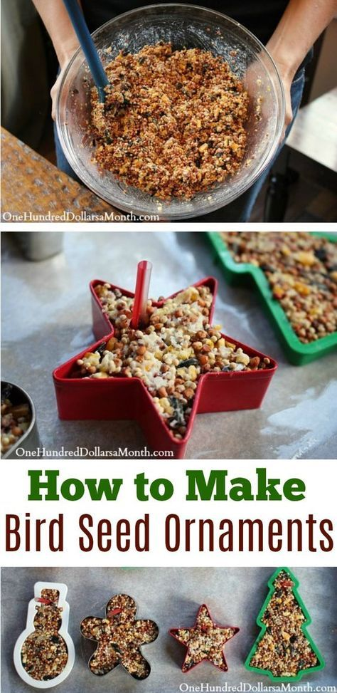 Easy Christmas Crafts - Bird Seed Ornaments - One Hundred Dollars a Month